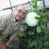 Шамиль, 64, г.Красноярск